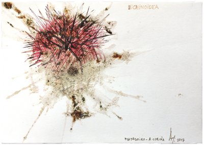 197。smashed sea urchin, ink/paper 14,8 x 21 cm - 5.82 x 8.26 in